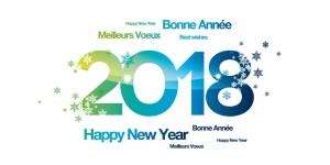 sessd;apf;lille;villeneuve d'ascq,les près,actualité,voeux,2018